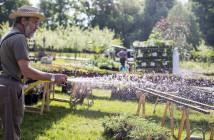 """Ein """"like"""" für das Gartenfestival. Foto: Pool Production"""