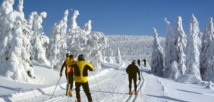Winterträume am Kältepol der Lausitz