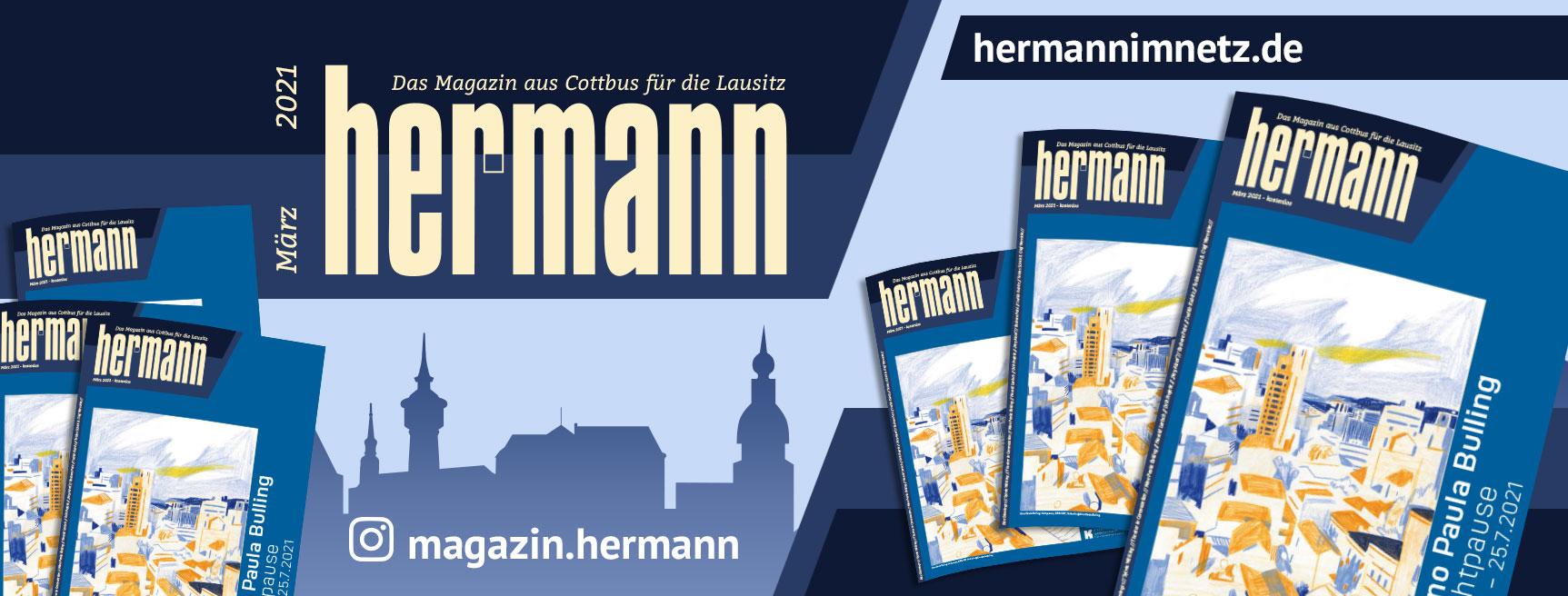 Hermann im Netz